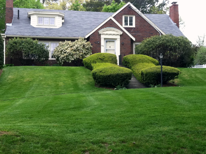 Landscaping and Landscape Installation and Maintenance