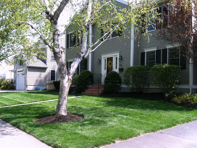 Landscape Design and Maintenance