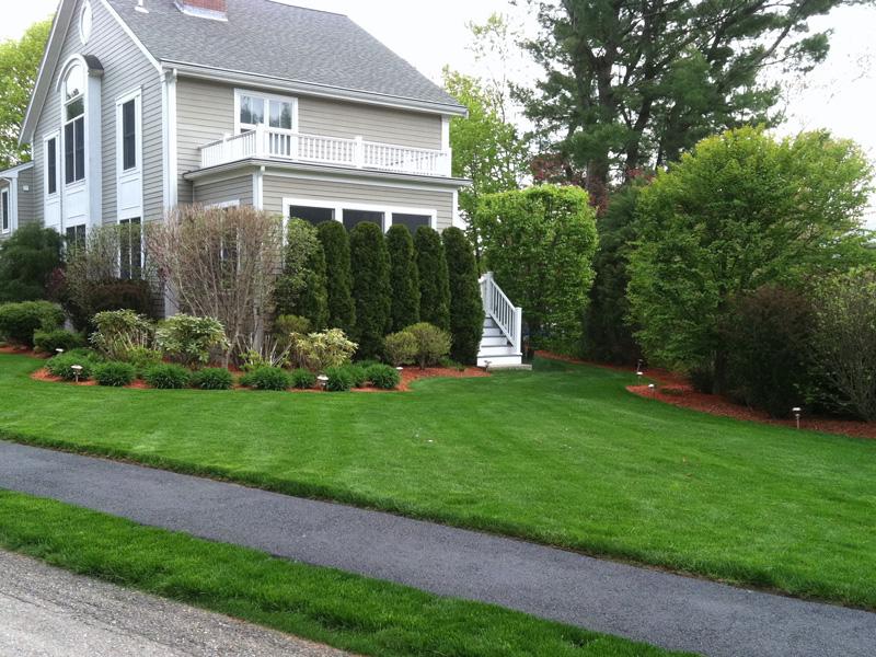 Landscape Design Installation and Maintenance