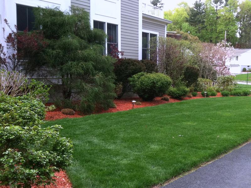 Landscape Design, Installation, and Maintenance