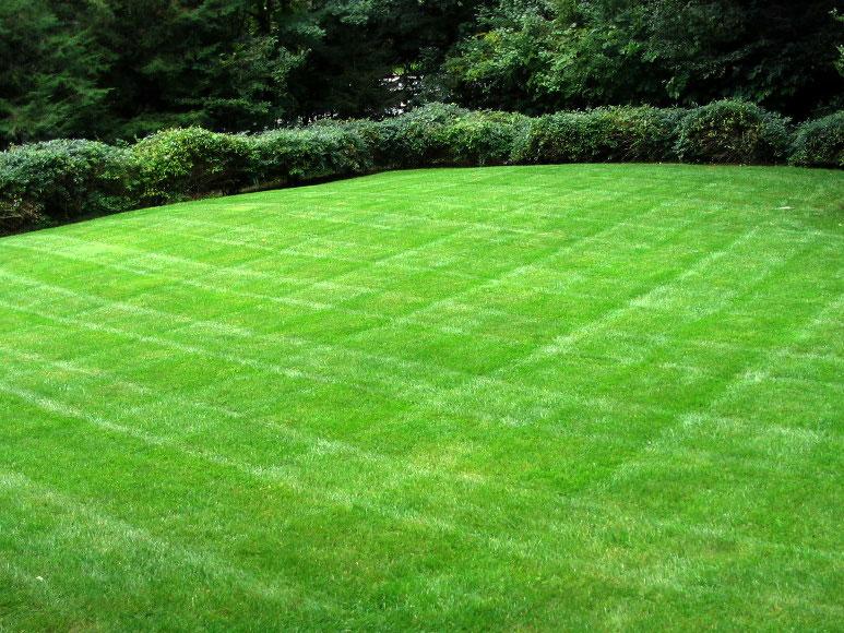 muir-bros-landscaping29