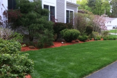 Landscape Design, Installation, and Maintenance