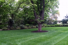 muir-bros-landscaping4
