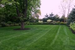 muir-bros-landscaping5