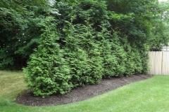 muir-bros-landscaping50